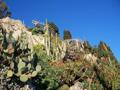 Jardin Exotique et Grottes de l